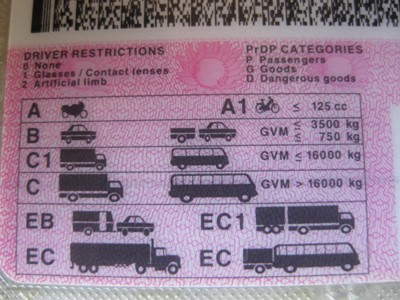 DRIVER RESTRICTIONS LICENSE